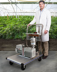 Mounted on a push cart with a built-in drip pan, MV Portable Cannabis Vacuum Systems can be equipped with vacuum pumps from 5.6 to 22 CFM