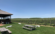 Covid-safe tours, wine country tours, New York Wine Events, Long Island wine tours, Hudson Valley Wine tours, wine tour leaving from New York City, Private winery tours, North Fork wineries, Hudson Valley vineyards, New York white wines, New York red wine