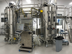 New manufacturing suite at Catalent Biologics facility, Madison
