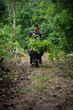 Earth Day, Earth Month, Forest, Reforestation, Peru, plant trees, farmers