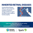 Prevent Blindness Declares Second Annual Inherited Retinal Disease (IRD) Genetic Testing Week as May 16-22